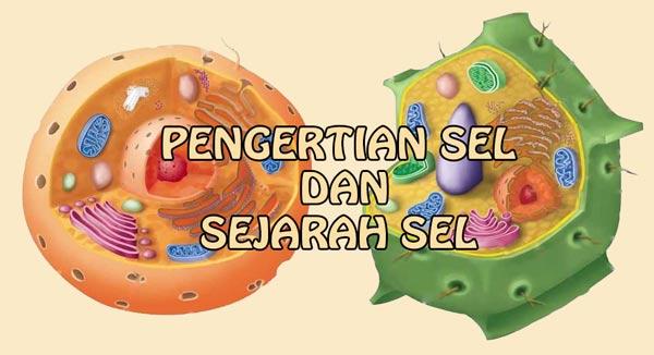 pengertian sel dan sejarah sel sejarah penemuan sel