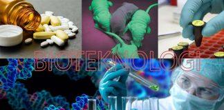 pengertian bioteknologi, contoh bioteknologi, bioteknologi konvensional dan bioteknologi modern