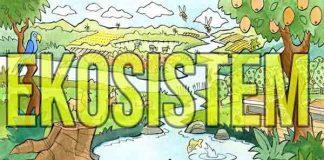 Pengertian Ekosistem Secara Umum dan Biologi