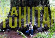 pengertian hutan menurut para ahli