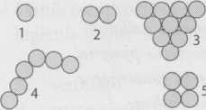 Gambar bentuk kokus bakteri
